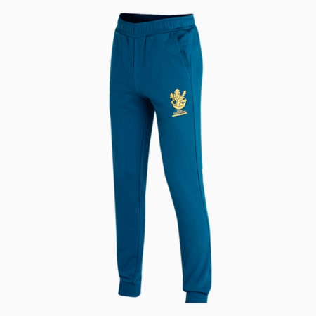 Royal Challengers Bangalore Graphic Men's Knitted Pants, Intense Blue-Mineral Yellow, small-IND