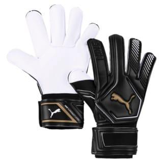 Изображение Puma Вратарские перчатки King GC
