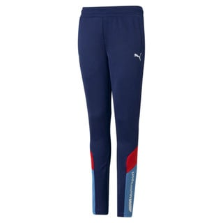 Изображение Puma Детские штаны BMW M Motorsport MCS Youth Track Pants