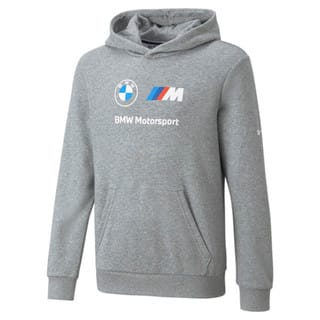 Изображение Puma Детская толстовка BMW M Motorsport Essentials Logo Youth Hoodie