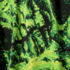 Görüntü Puma PUMA x SANTA CRUZ Baskılı Uzun Kollu T-shirt #3