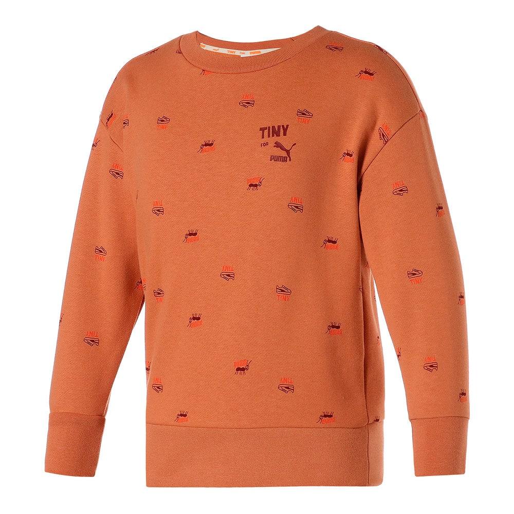 Зображення Puma Дитяча толстовка PUMA x TINYCOTTONS Printed Crew Neck Kids' Sweatshirt #1: Pheasant