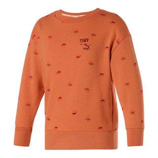 Изображение Puma Детская толстовка PUMA x TINYCOTTONS Printed Crew Neck Kids' Sweatshirt