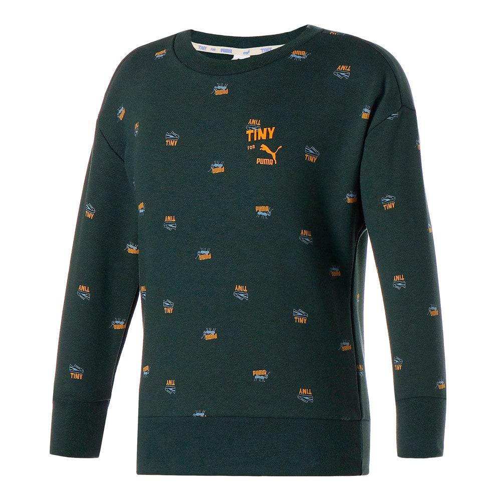 Зображення Puma Дитяча толстовка PUMA x TINYCOTTONS Printed Crew Neck Kids' Sweatshirt #1: Green Gables