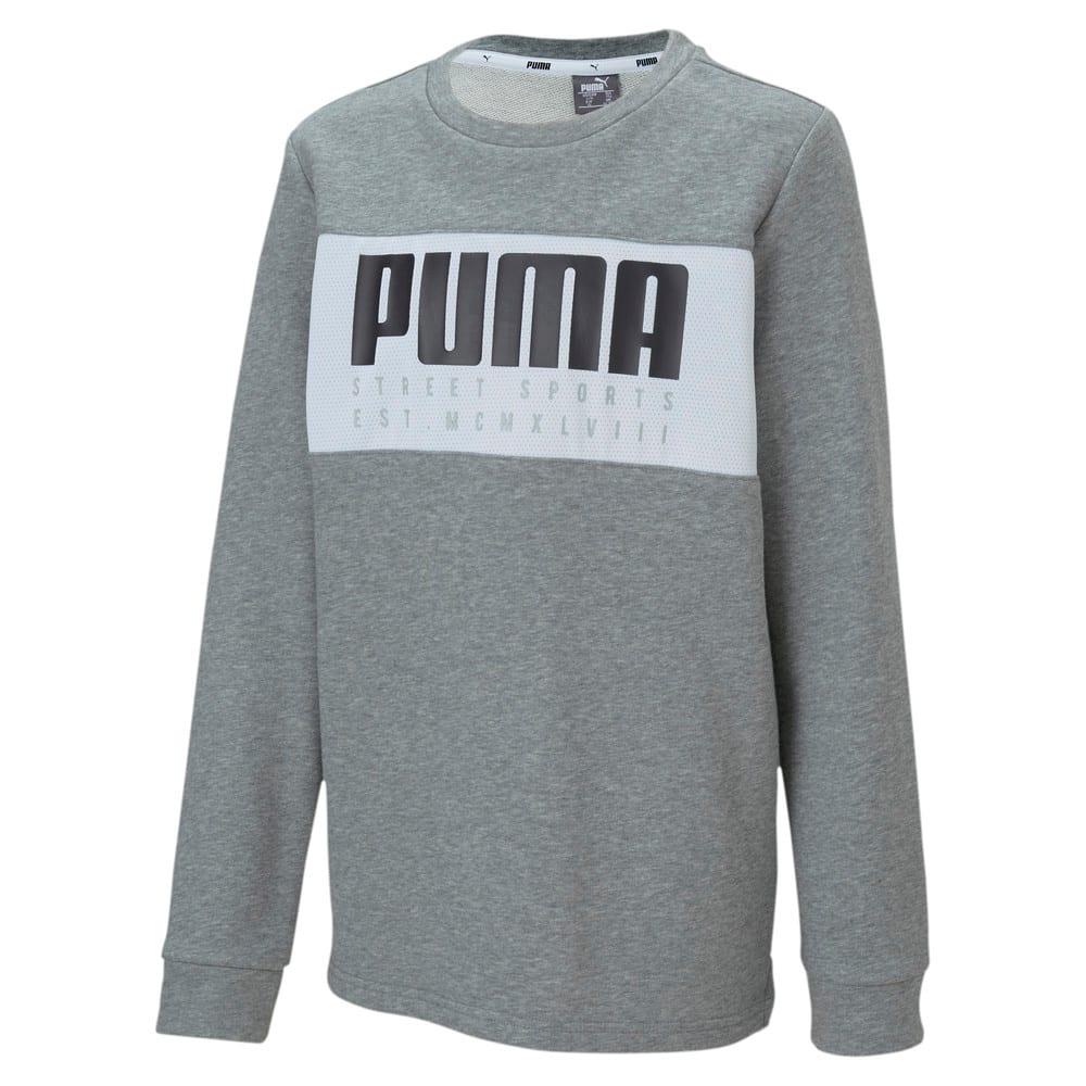 Изображение Puma Детская толстовка Alpha Crew #1
