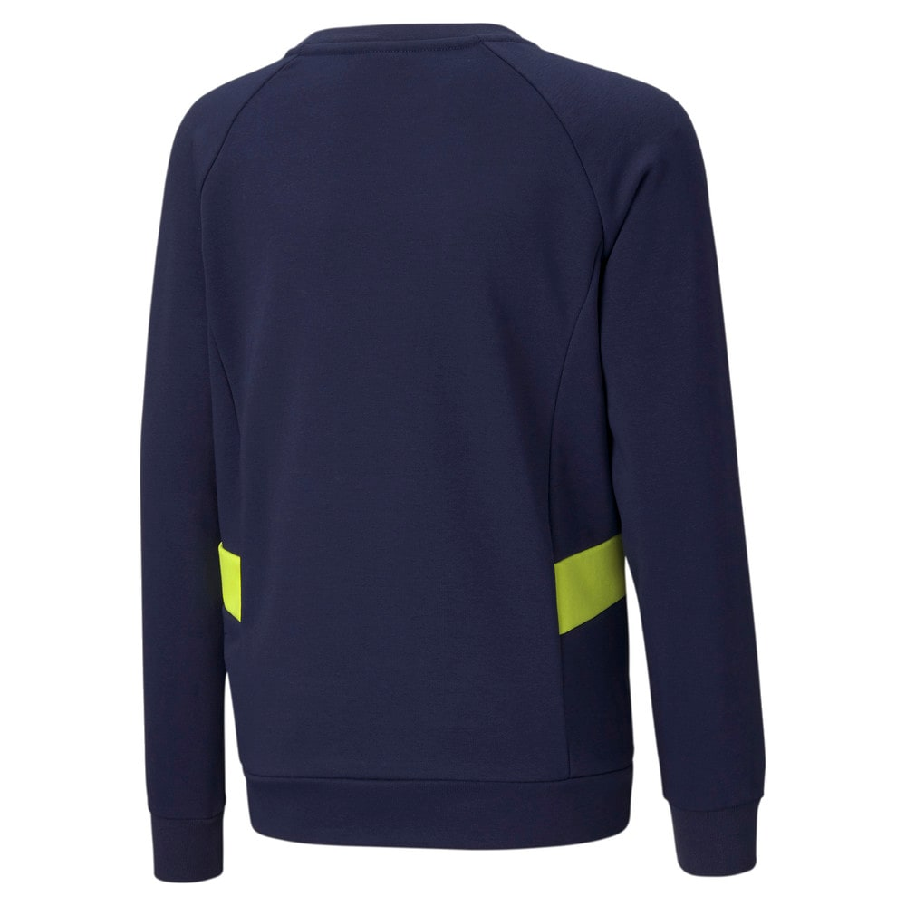 Image Puma Active Sports Crew Neck Youth Sweater #2