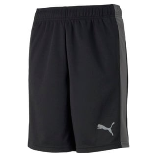 Зображення Puma Дитячі шорти Active Sports Youth Shorts