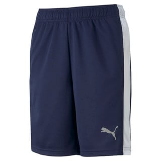 Изображение Puma Детские шорты Active Sports Youth Shorts