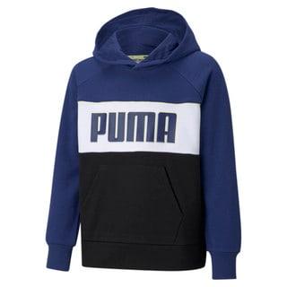 Изображение Puma Детская толстовка Alpha Youth Hoodie