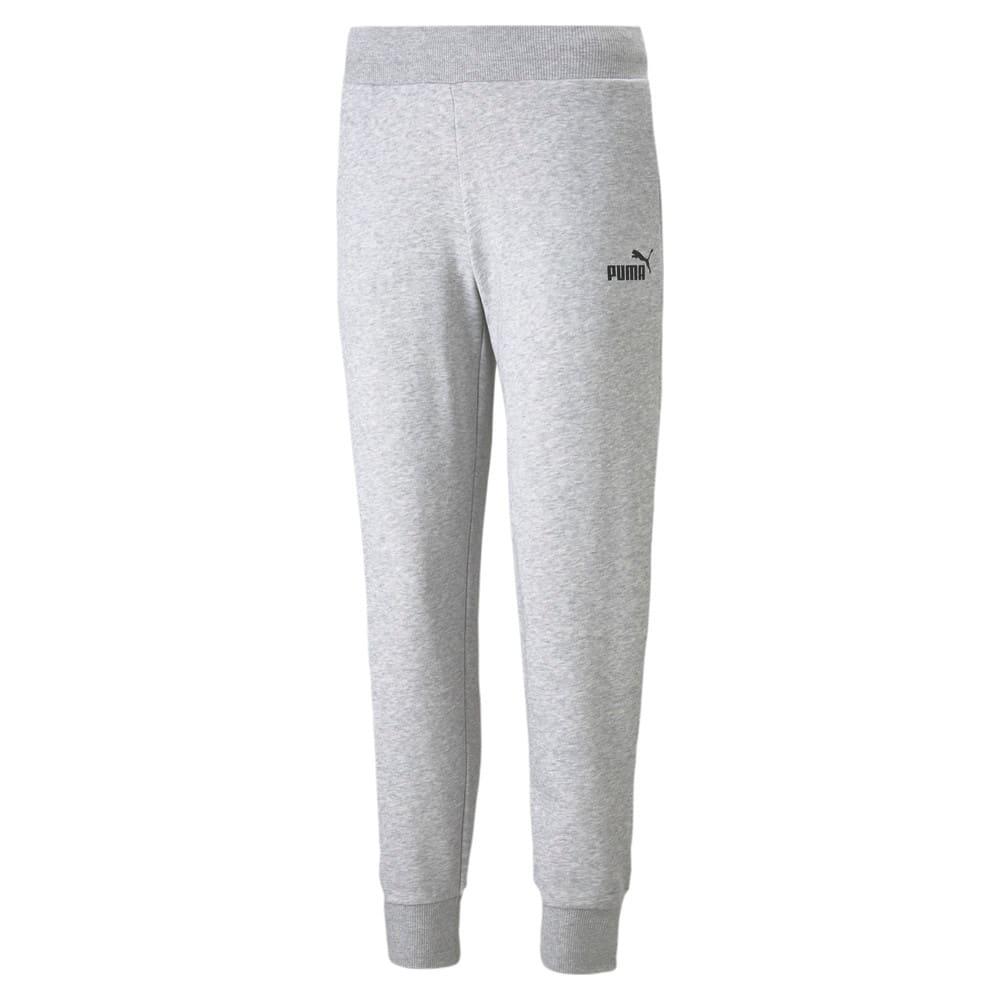 Изображение Puma Штаны Essentials Women's Sweatpants #1: light gray heather