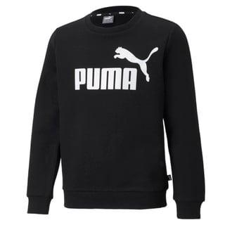 Изображение Puma Детская толстовка Essentials Big Logo Crew Neck Youth Sweatshirt