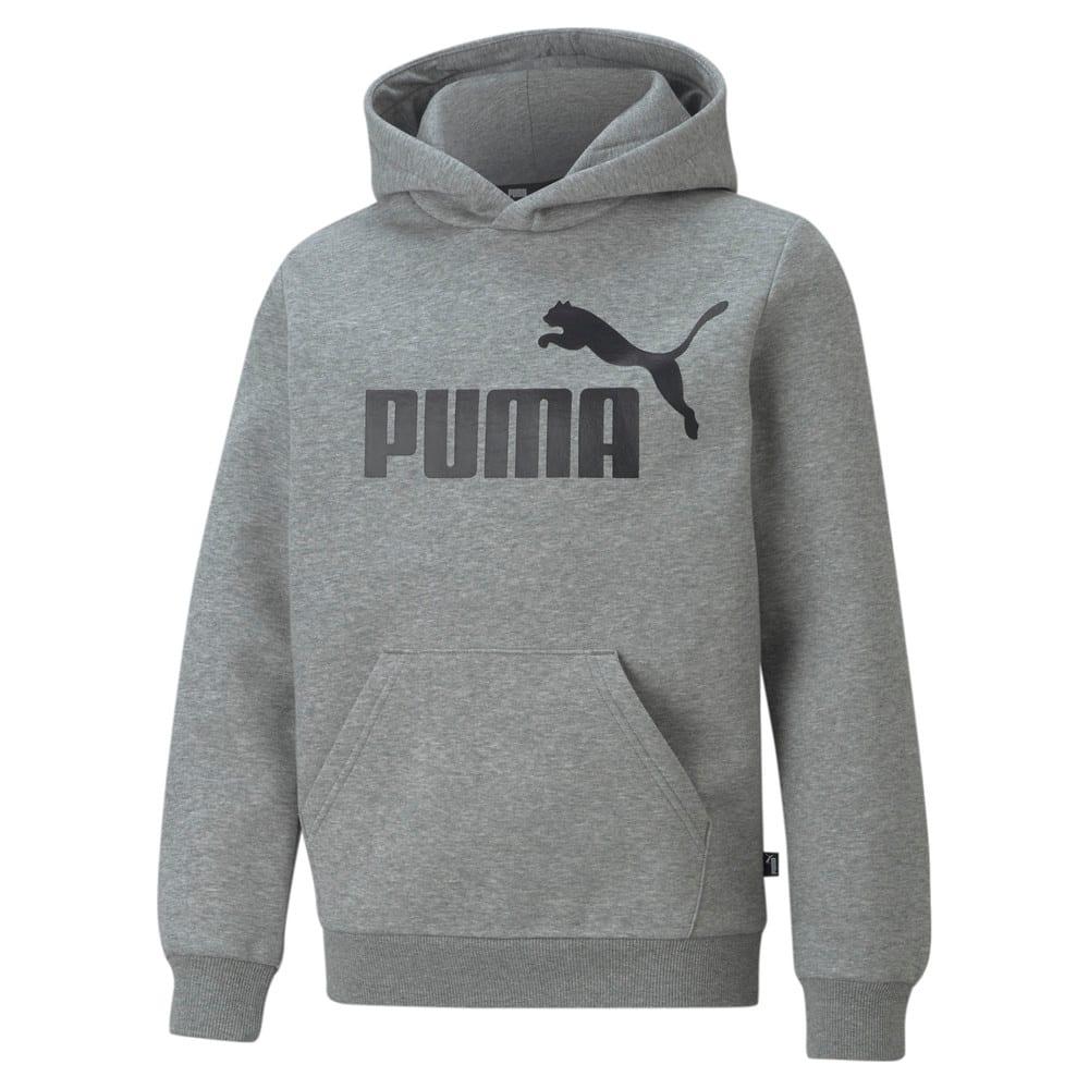 Imagen PUMA Polerón juvenil con capucha y logotipo grande Essentials #1