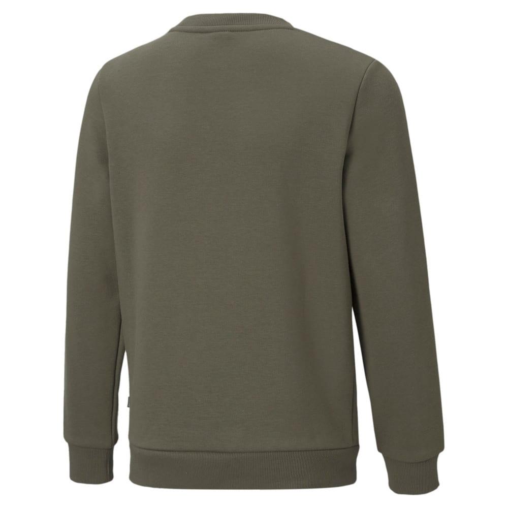 Зображення Puma Дитяча толстовка Essentials+ Two-Tone Big Logo Crew Neck Youth Sweater #2: Grape Leaf
