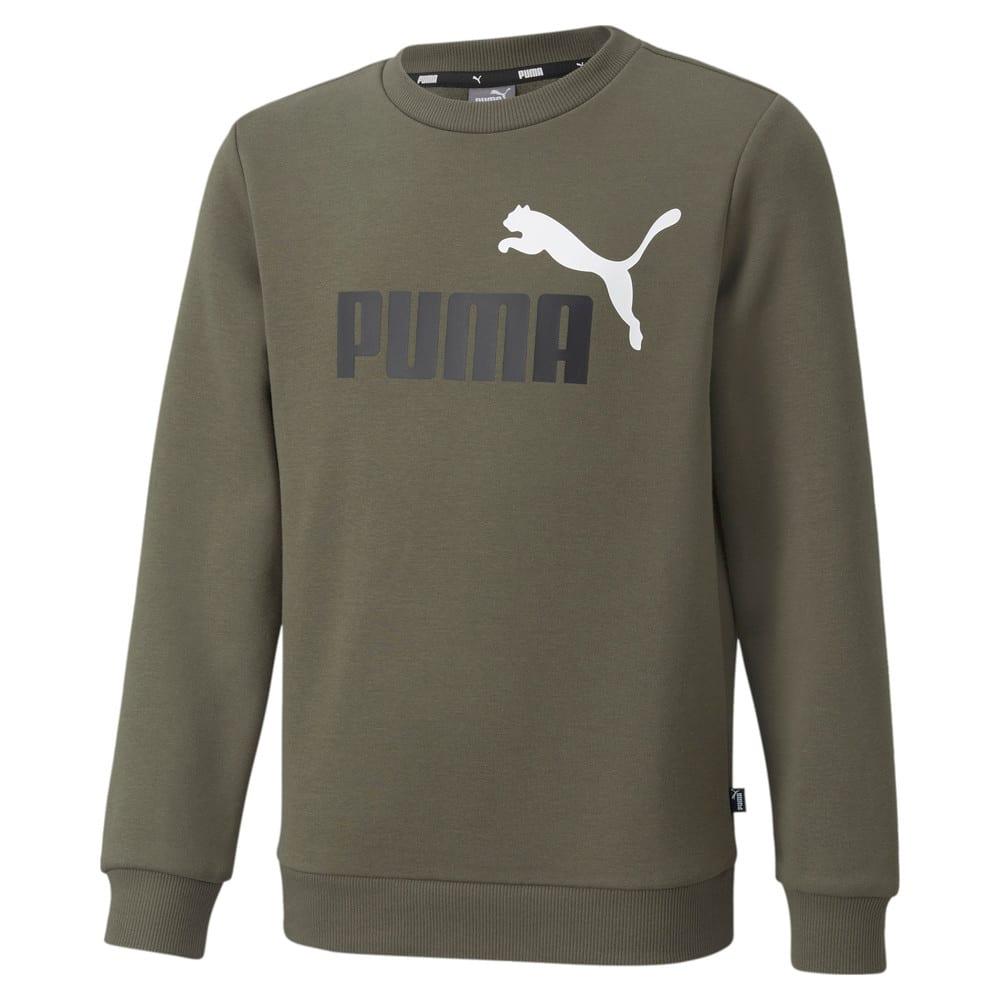 Зображення Puma Дитяча толстовка Essentials+ Two-Tone Big Logo Crew Neck Youth Sweater #1: Grape Leaf