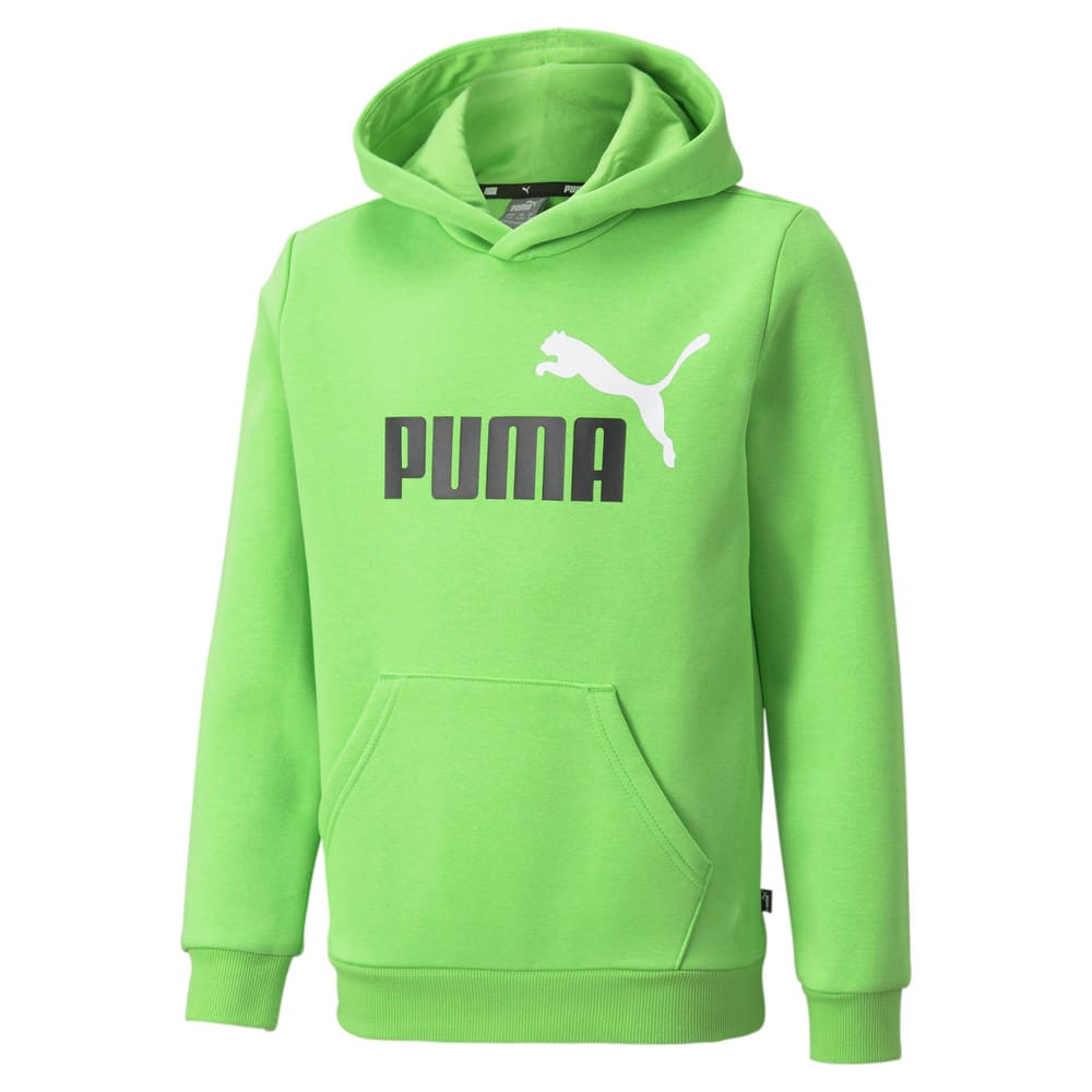 Зображення Puma Дитяча толстовка Essentials+ Two-Tone Big Logo Youth Hoodie #1: green flash