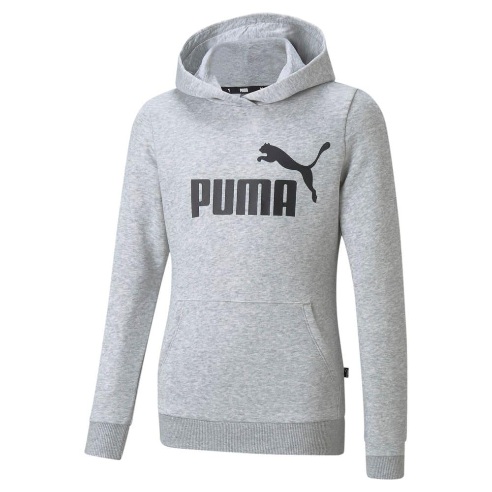 Image PUMA Moletom com Capuz Essentials Logo Juvenil #1
