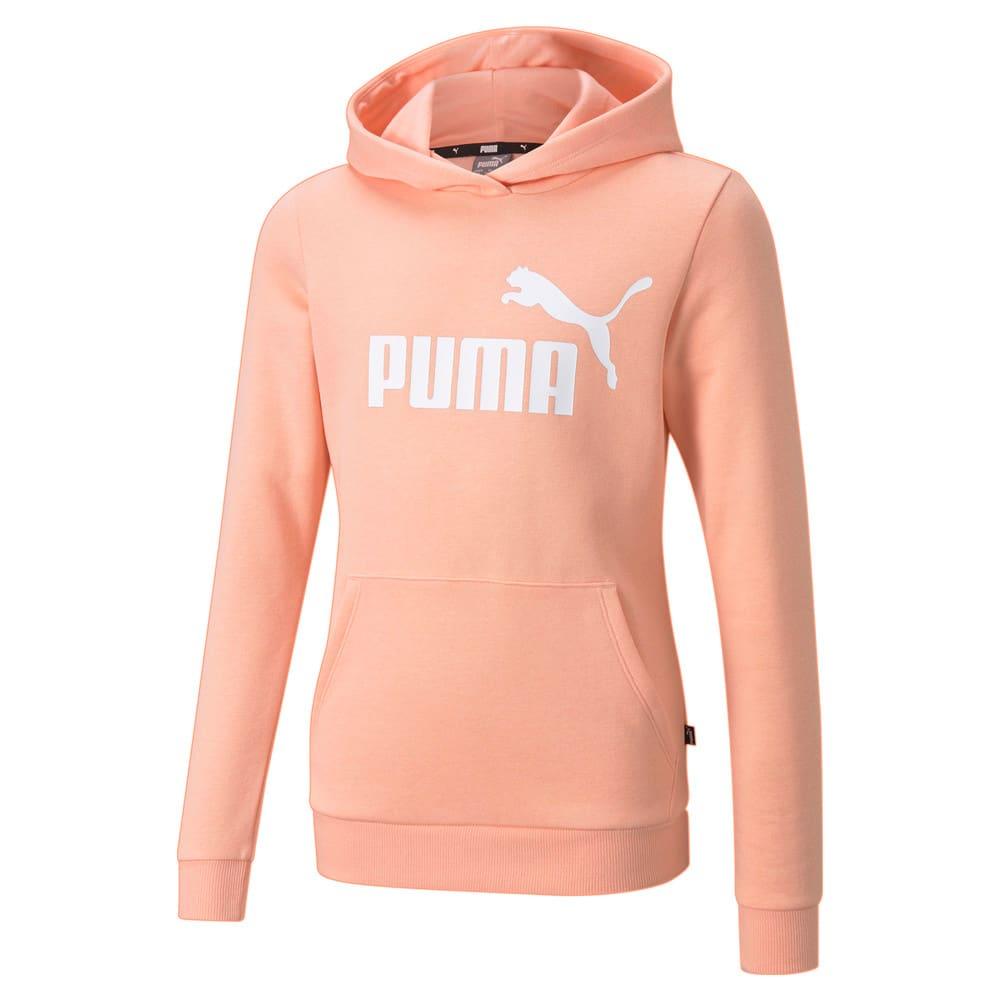 Image Puma Essentials Logo Youth Hoodie #1