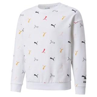 Изображение Puma Детская толстовка Classics Graphics Crew Neck Youth Sweatshirt