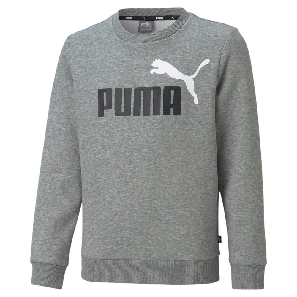 Image Puma Youth Sweatshirt #1