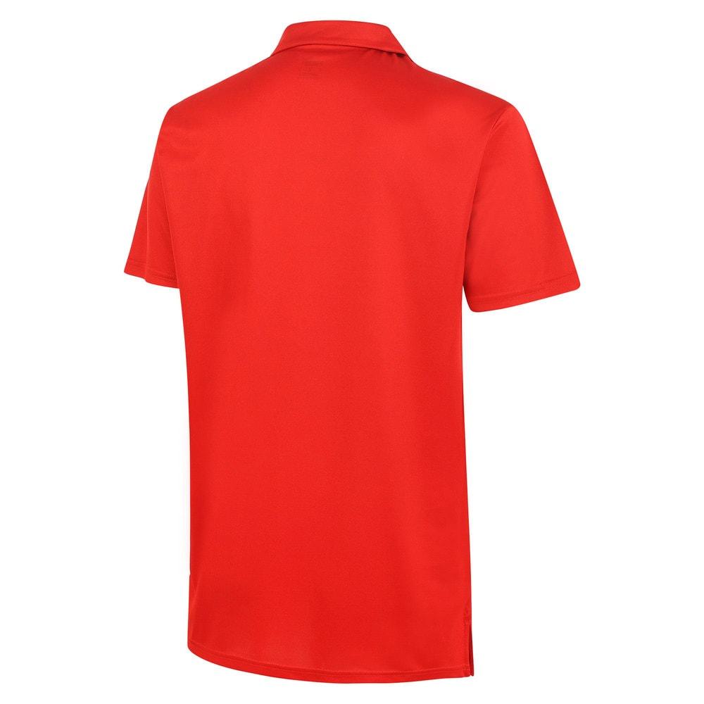 Görüntü Puma Türkiye Basketbol Milli Takım Polo T-shirt #2