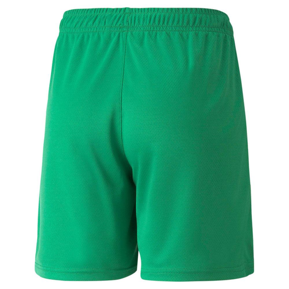 Изображение Puma Шорты Neymar Jr Youth Football Shorts #2
