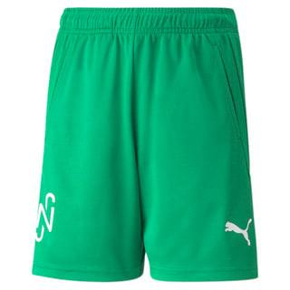 Изображение Puma Шорты Neymar Jr Youth Football Shorts