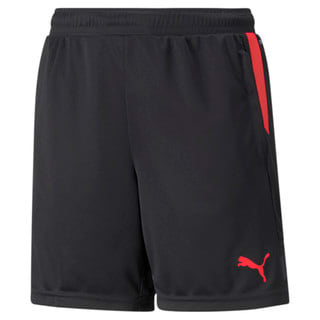 Изображение Puma Детские шорты individualCUP Youth Football Shorts