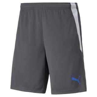 Изображение Puma Шорты teamLIGA Training Men's Football Shorts 2