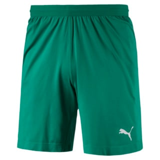 Изображение Puma Шорты FINAL evoKNIT Men's Shorts