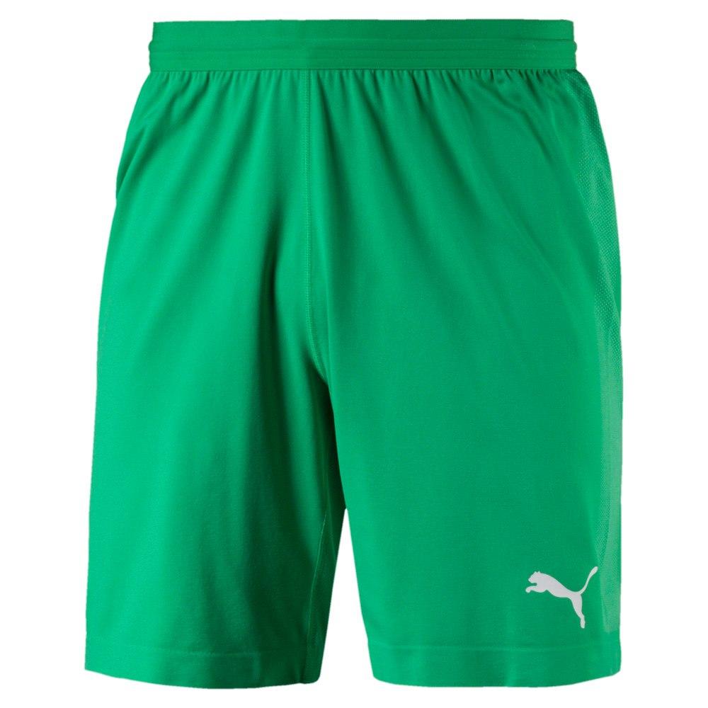 Изображение Puma Шорты FINAL evoKNIT Men's Goalkeeper Shorts #1