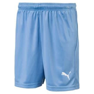 Изображение Puma Шорты LIGA Kids' Football Shorts