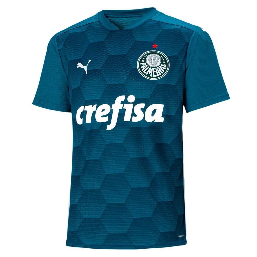 Image PUMA Camisa Goleiro Palmeiras II Masculina #1