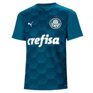Image PUMA Camisa Goleiro Palmeiras II Masculina