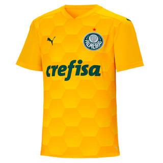 Image PUMA Camisa Goleiro Palmeiras Kids