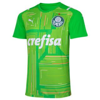 Image PUMA Camisa Palmeiras Goleiro II 2021 Masculina