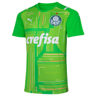 Camisa Palmeiras Goleiro II 2021 Masculina