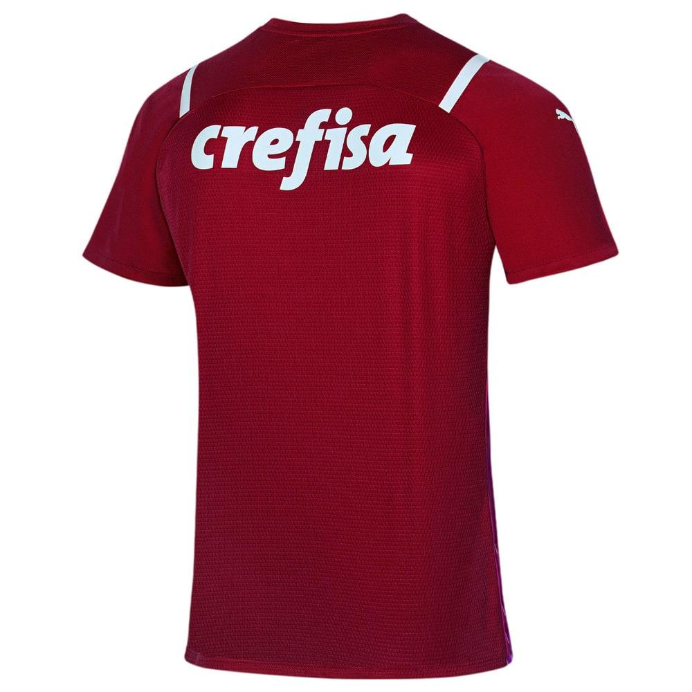 Image PUMA Camisa Palmeiras Goleiro III 2021 Masculina #2