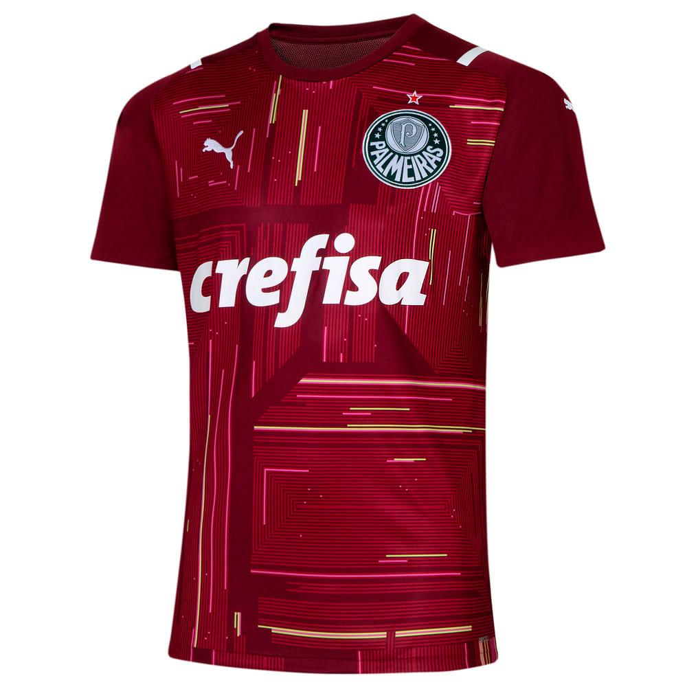 Image PUMA Camisa Palmeiras Goleiro III 2021 Masculina #1