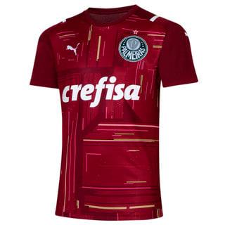 Image PUMA Camisa Palmeiras Goleiro III 2021 Masculina