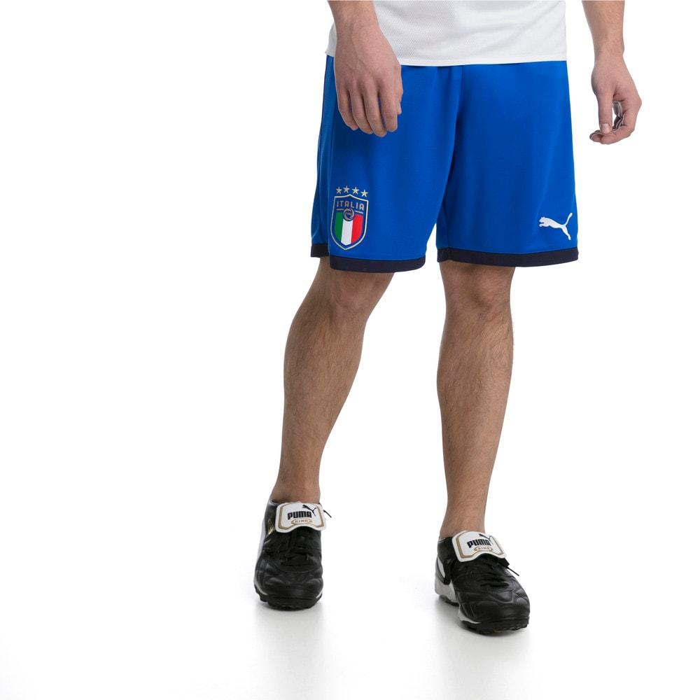 Görüntü Puma FIGC ITALIA Replika Erkek Şort #1
