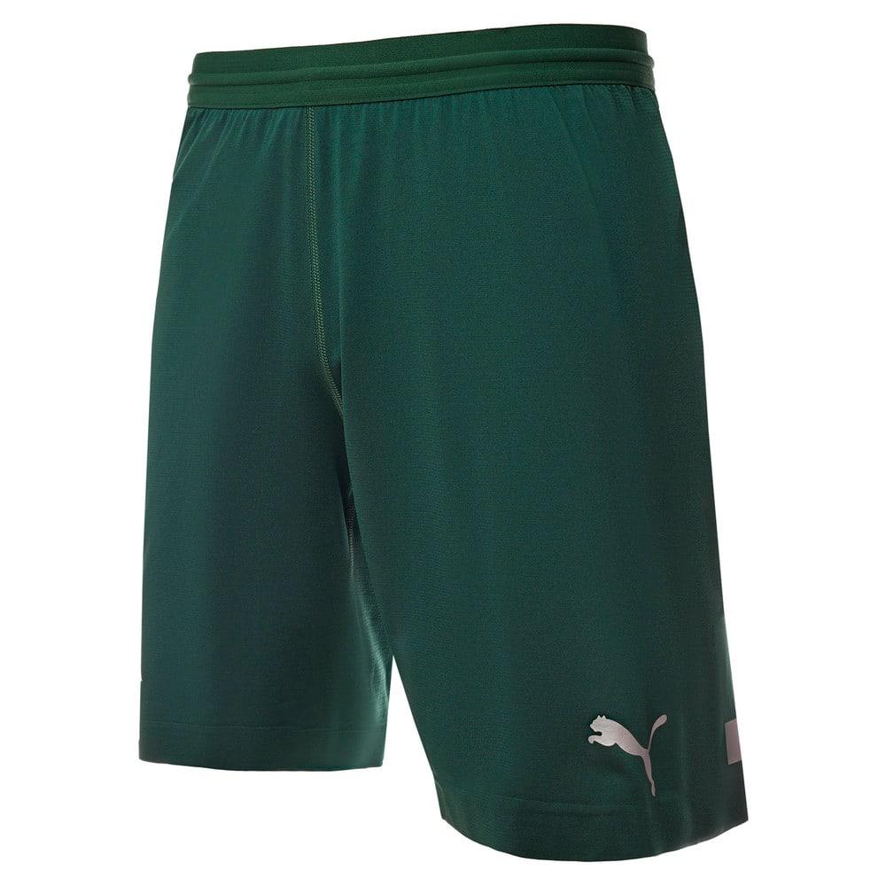 Изображение Puma Шорты FC Krasnodar Promo Shorts #1