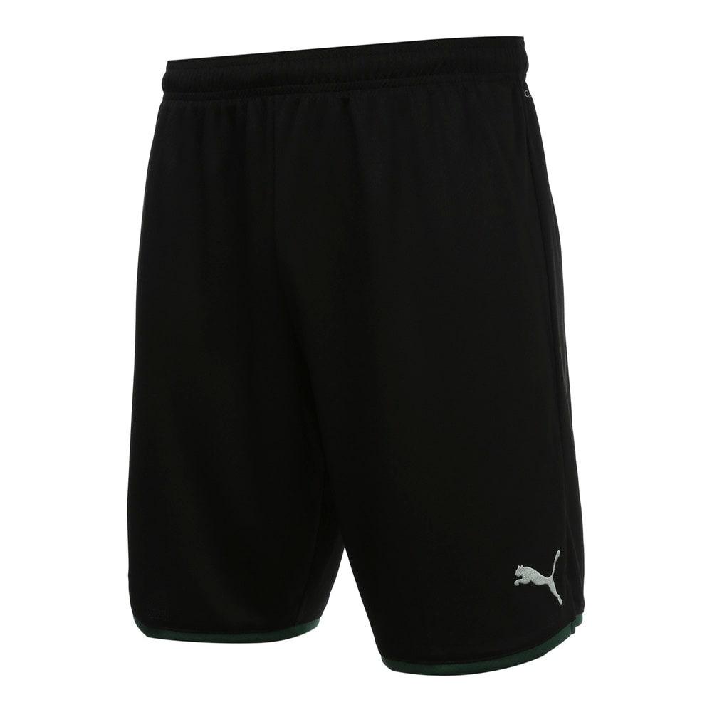 Изображение Puma Шорты FCK Shorts Replica #1