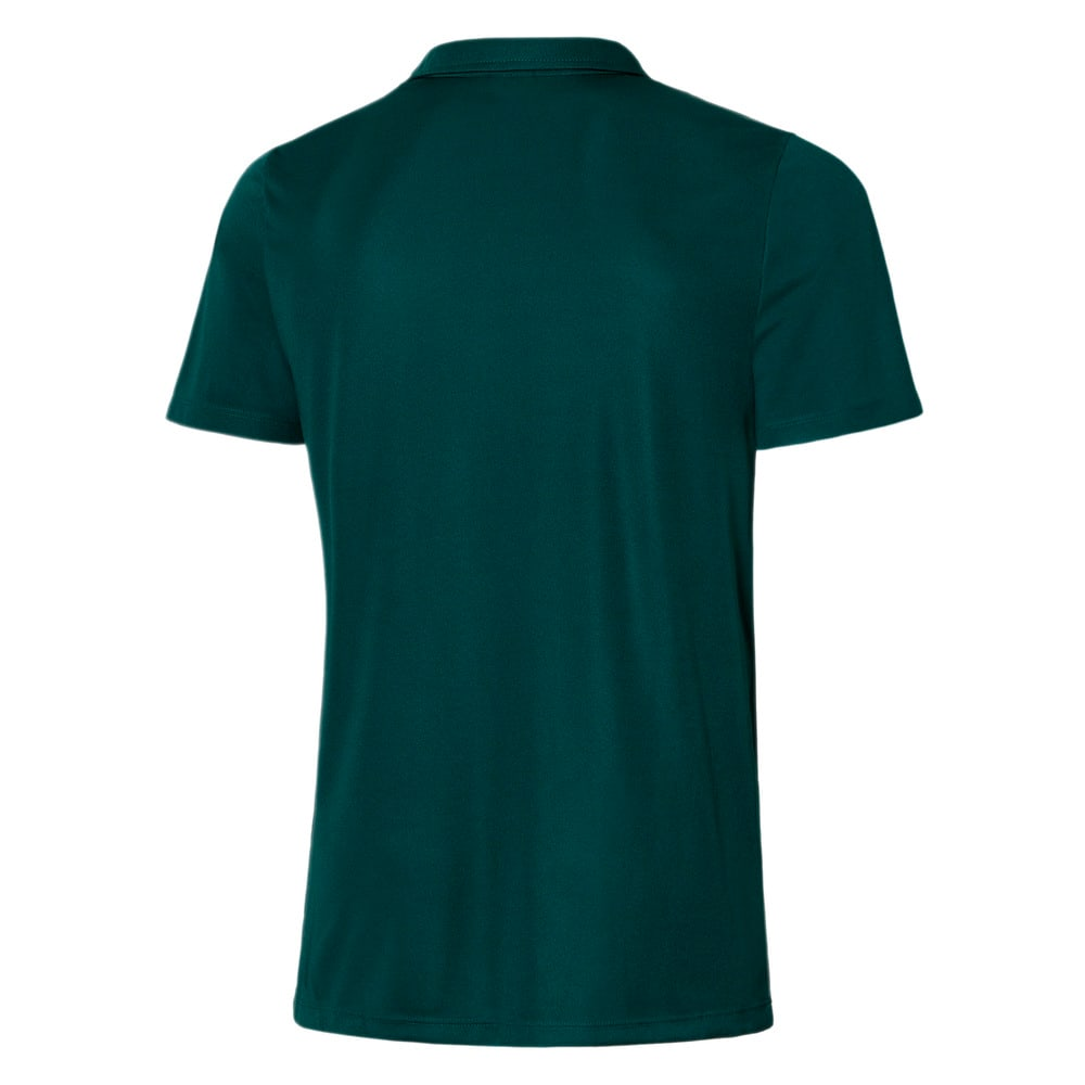 Image PUMA Camisa Palmeiras Polo Casual Goal Masculina #2
