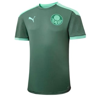 Image PUMA Camisa de Treino Palmeiras 2021 Kids