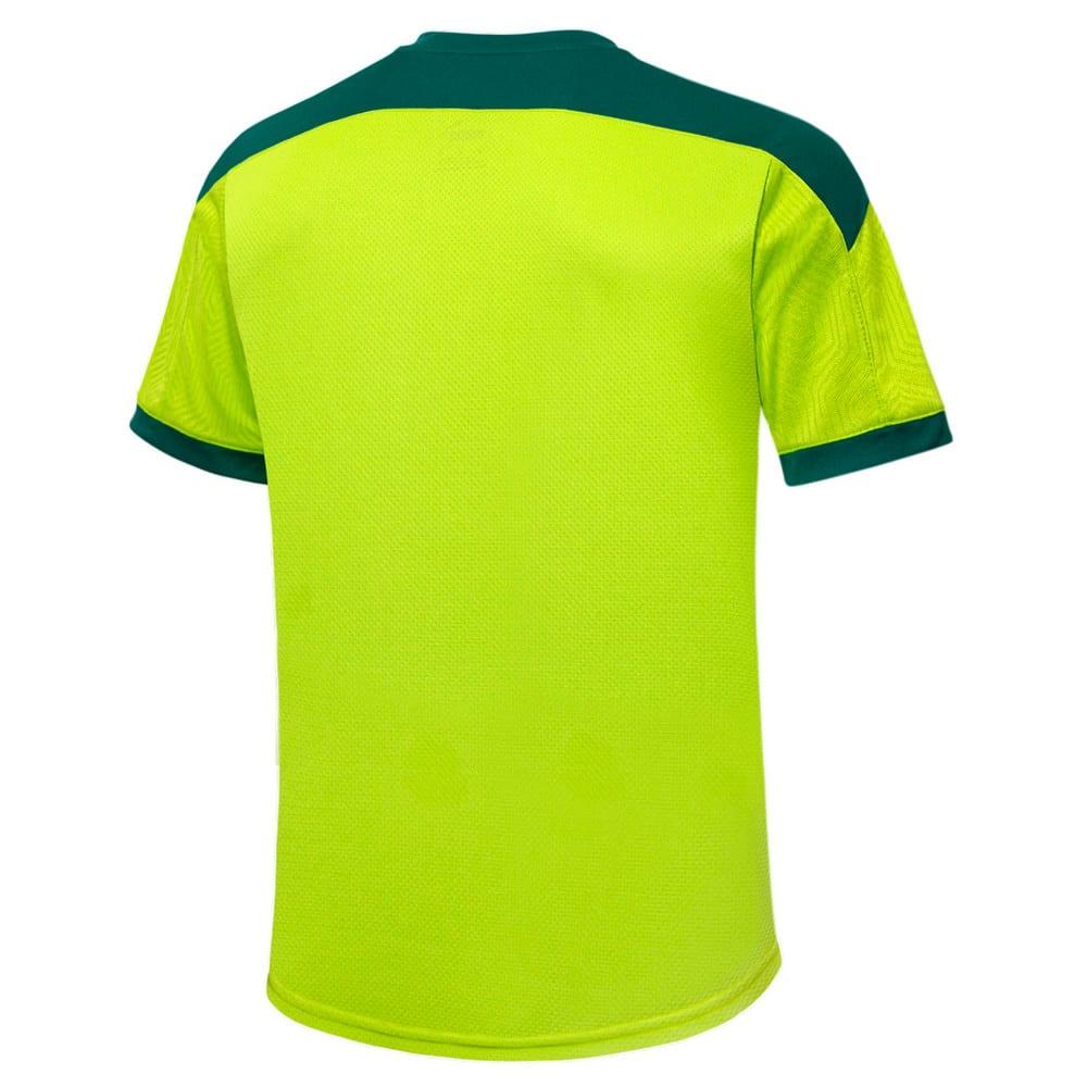 Image PUMA Camisa de Treino Palmeiras 2021 Kids #2