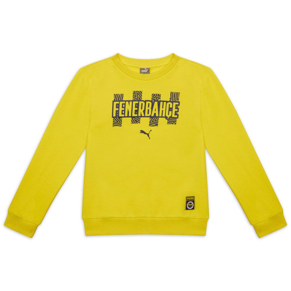 Görüntü Puma Fenerbahçe SK JR FtblCore Sweatshirt #1
