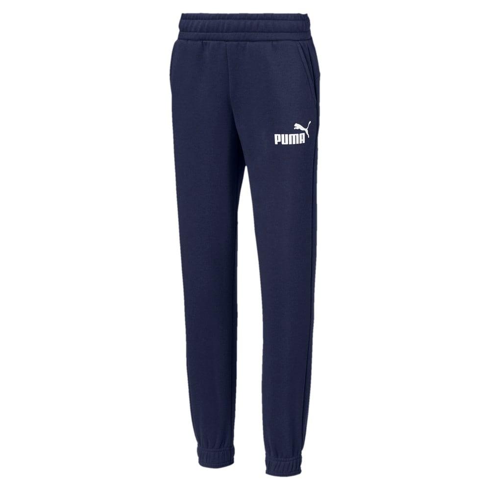 Изображение Puma Штаны Essentials Sweat Pants B #1