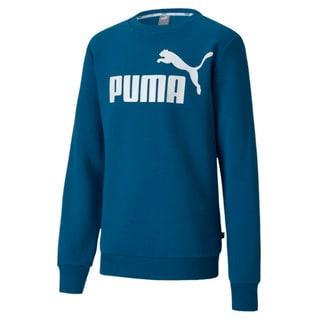 Изображение Puma Детская толстовка Essentials Crew Sweat B