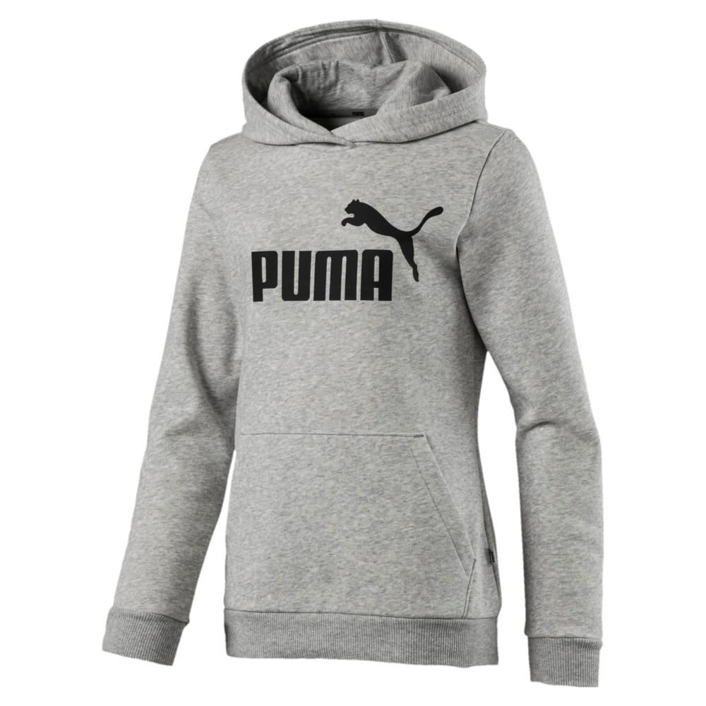 Imagen PUMA Polerón con capucha Essentials #1