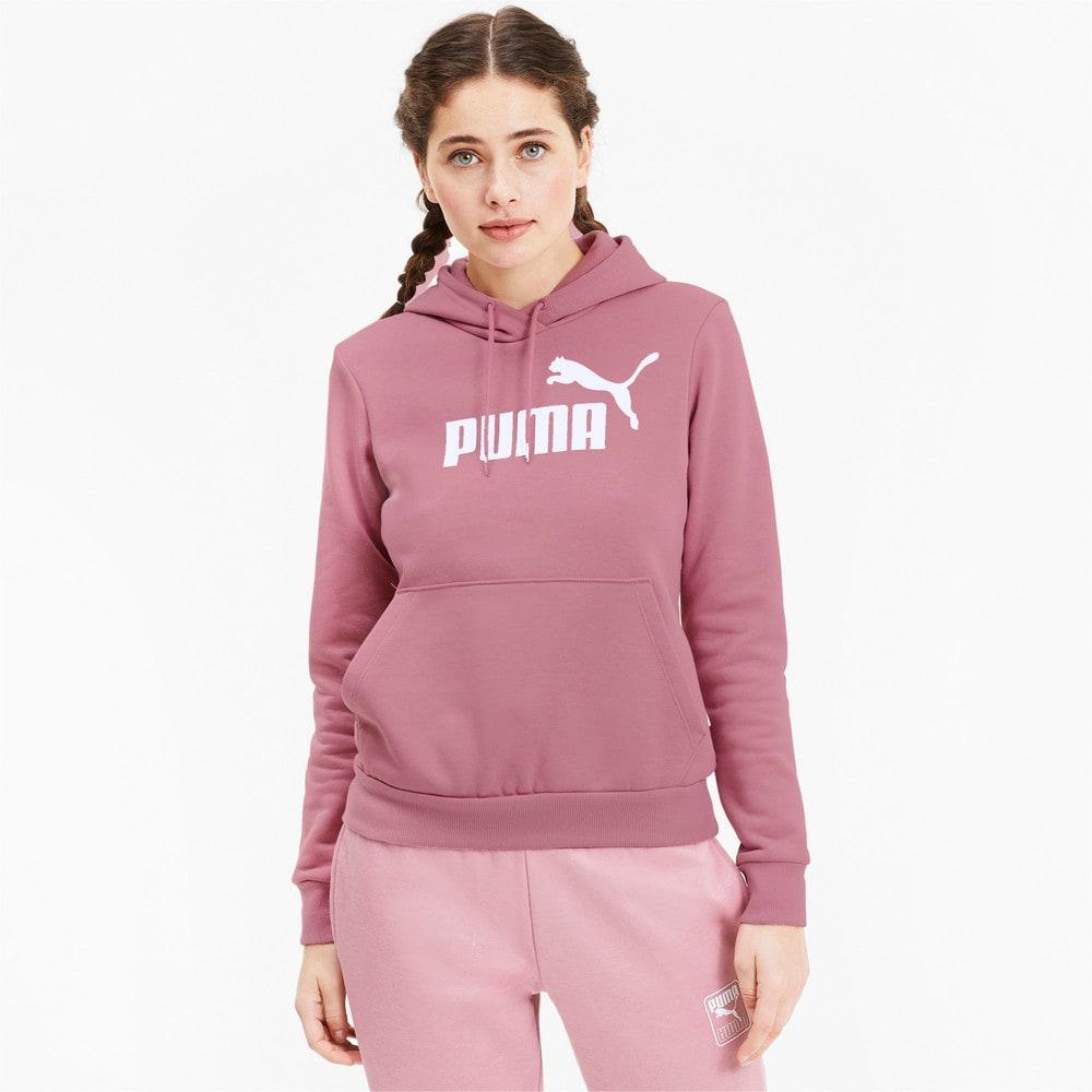 Изображение Puma Толстовка Essentials Fleece Hoody #1